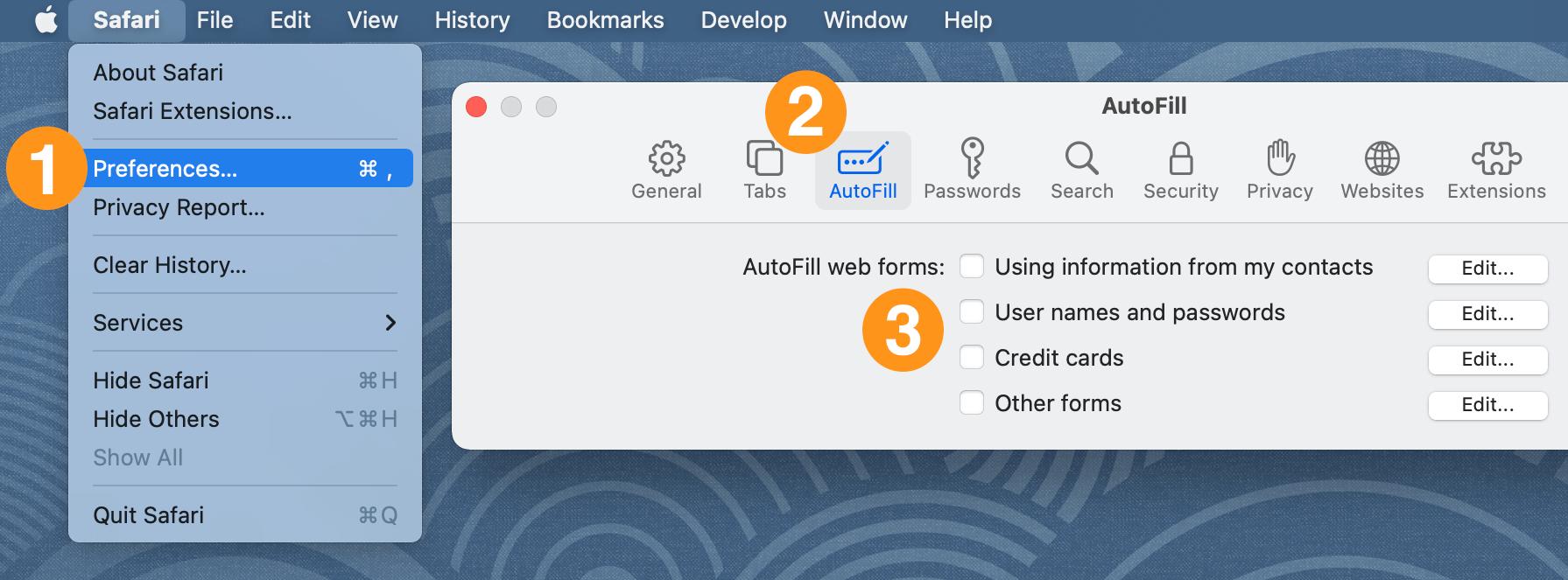 Turn off the AutoFill settings in Safari preferences